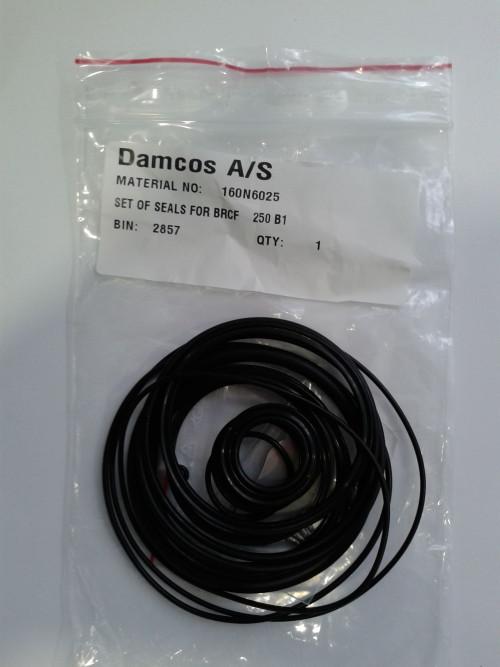 Damcos : Danfoss BRCF 250-B1 Seal Kit 160N6025